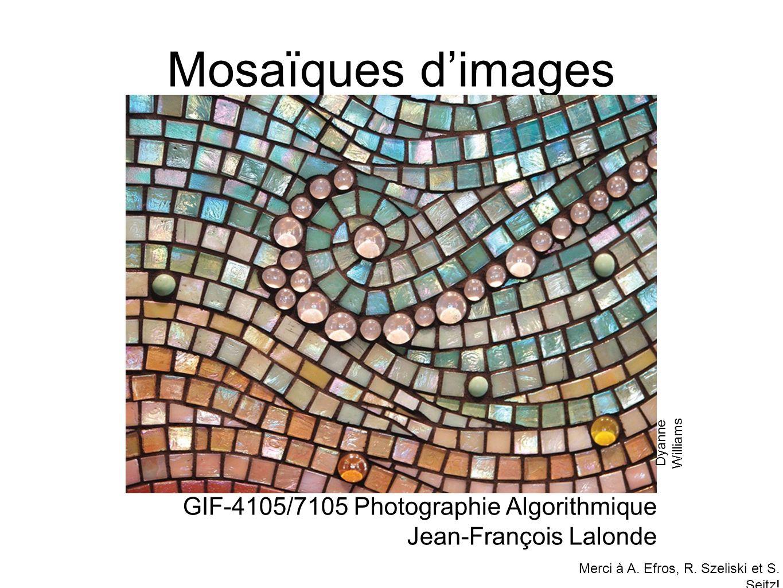 Mosaïques d'images GIF-4105/7105 Photographie Algorithmique