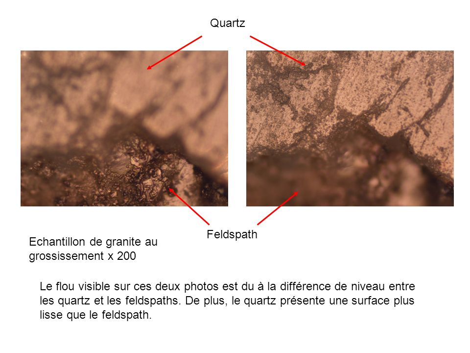 Quartz Feldspath. Echantillon de granite au grossissement x 200.
