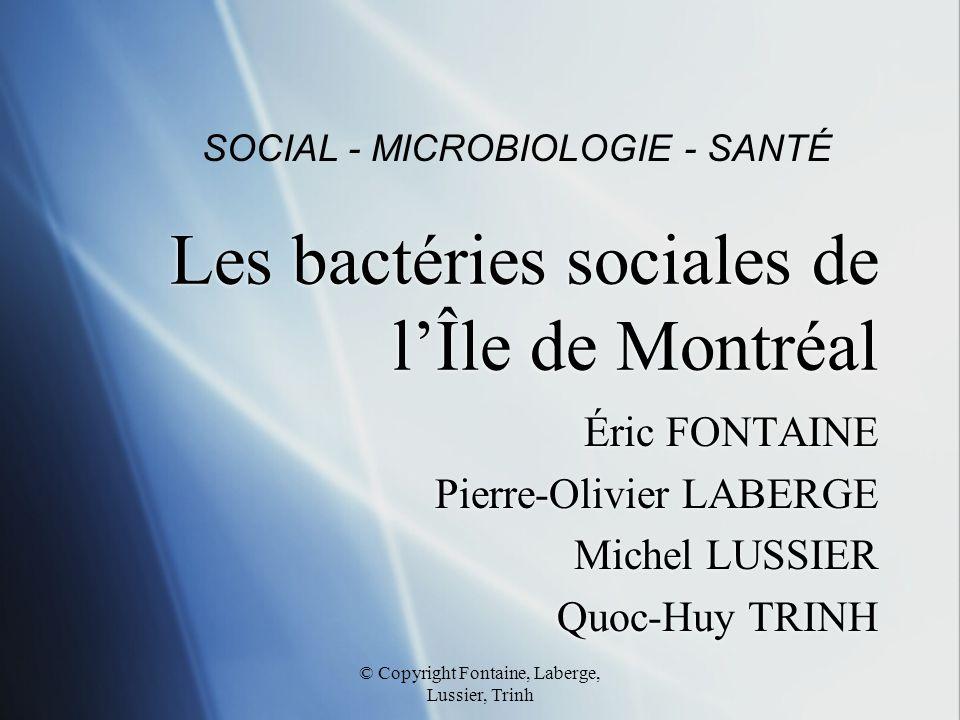 Les bactéries sociales de l'Île de Montréal