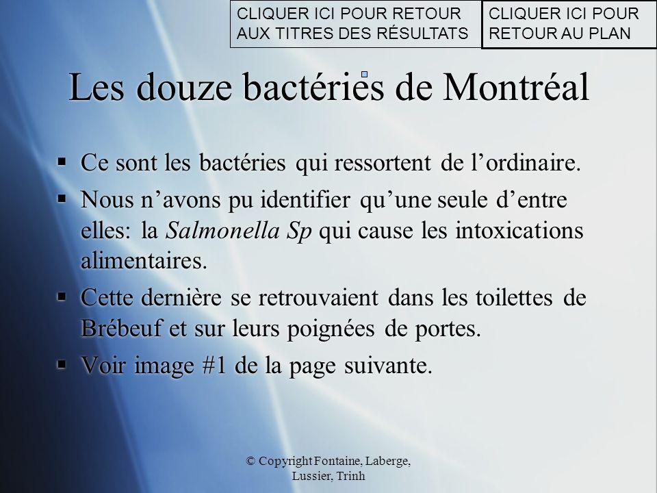 Les douze bactéries de Montréal