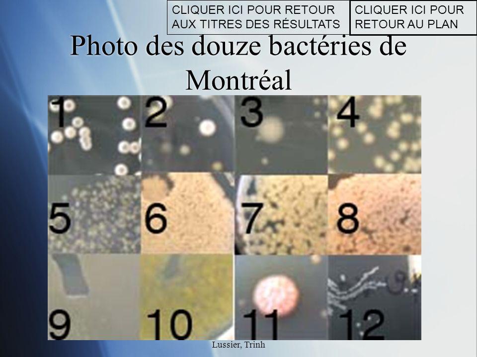 Photo des douze bactéries de Montréal
