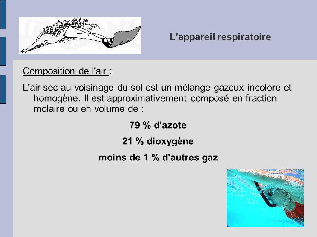 L appareil respiratoire