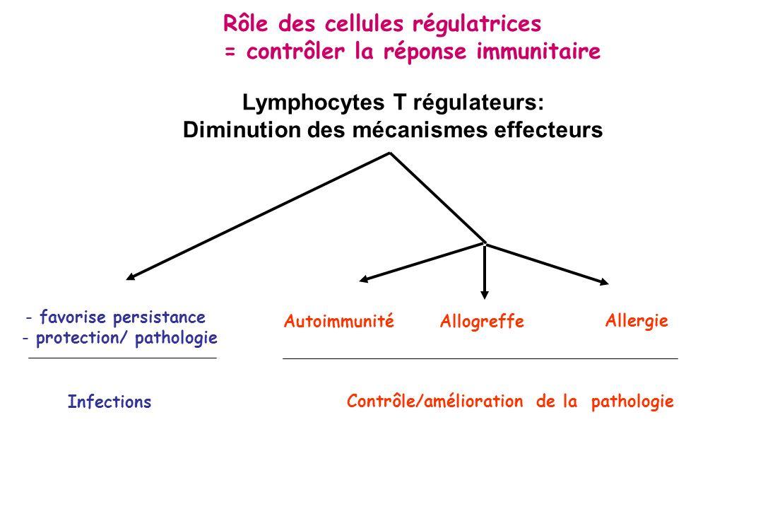 Lymphocytes T régulateurs: Diminution des mécanismes effecteurs