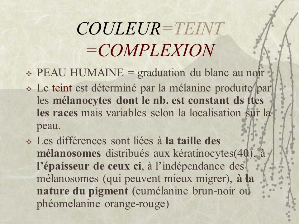 COULEUR=TEINT =COMPLEXION