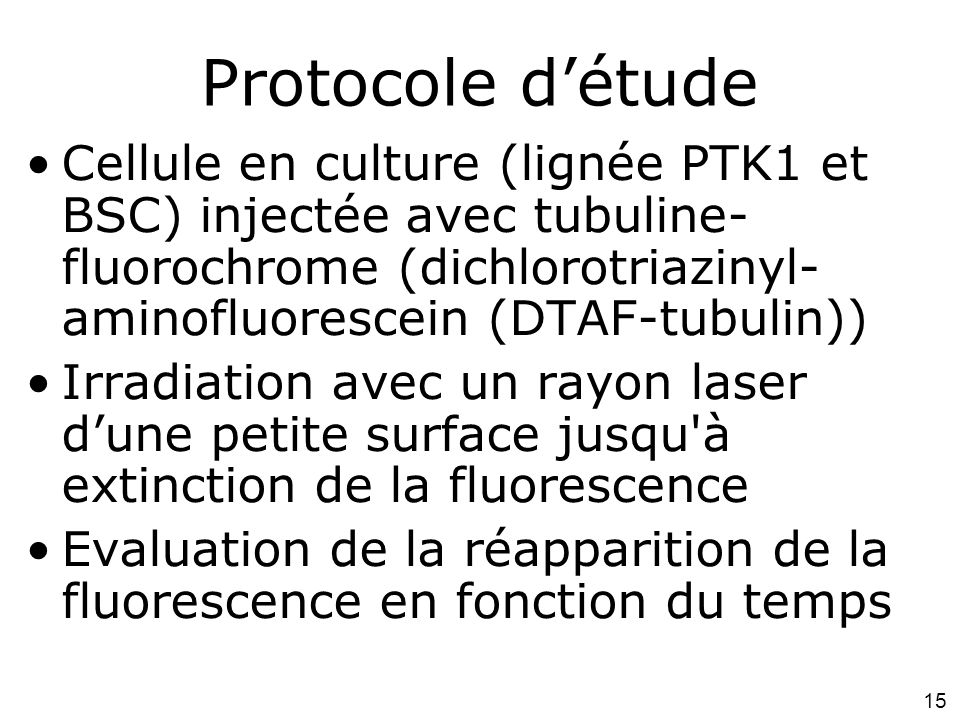 Mardi 29 janvier 2008 Protocole d'étude.