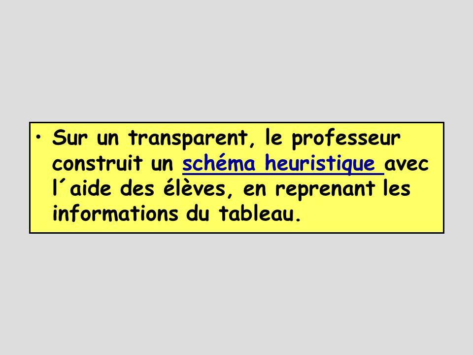 Sur un transparent, le professeur construit un schéma heuristique avec l´aide des élèves, en reprenant les informations du tableau.
