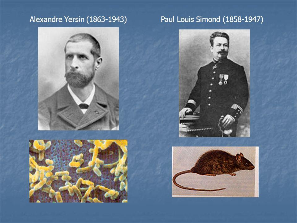 Alexandre Yersin (1863-1943) Paul Louis Simond (1858-1947)