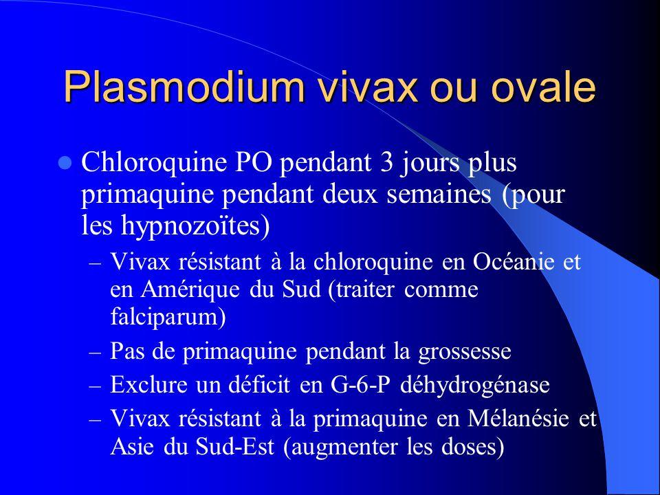 Plasmodium vivax ou ovale