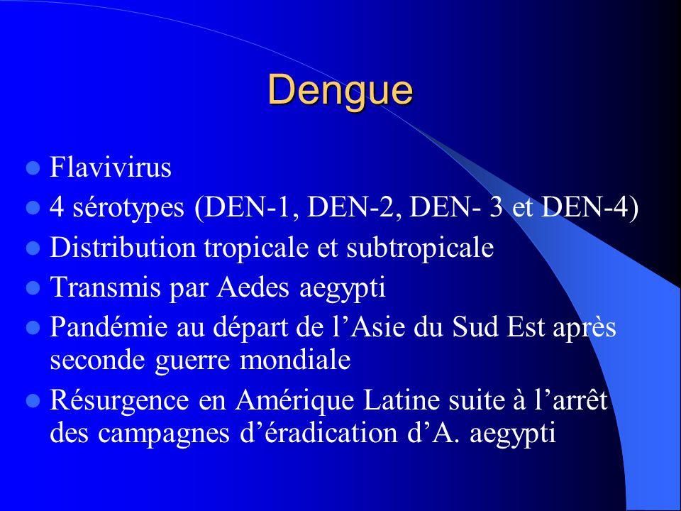 Dengue Flavivirus 4 sérotypes (DEN-1, DEN-2, DEN- 3 et DEN-4)