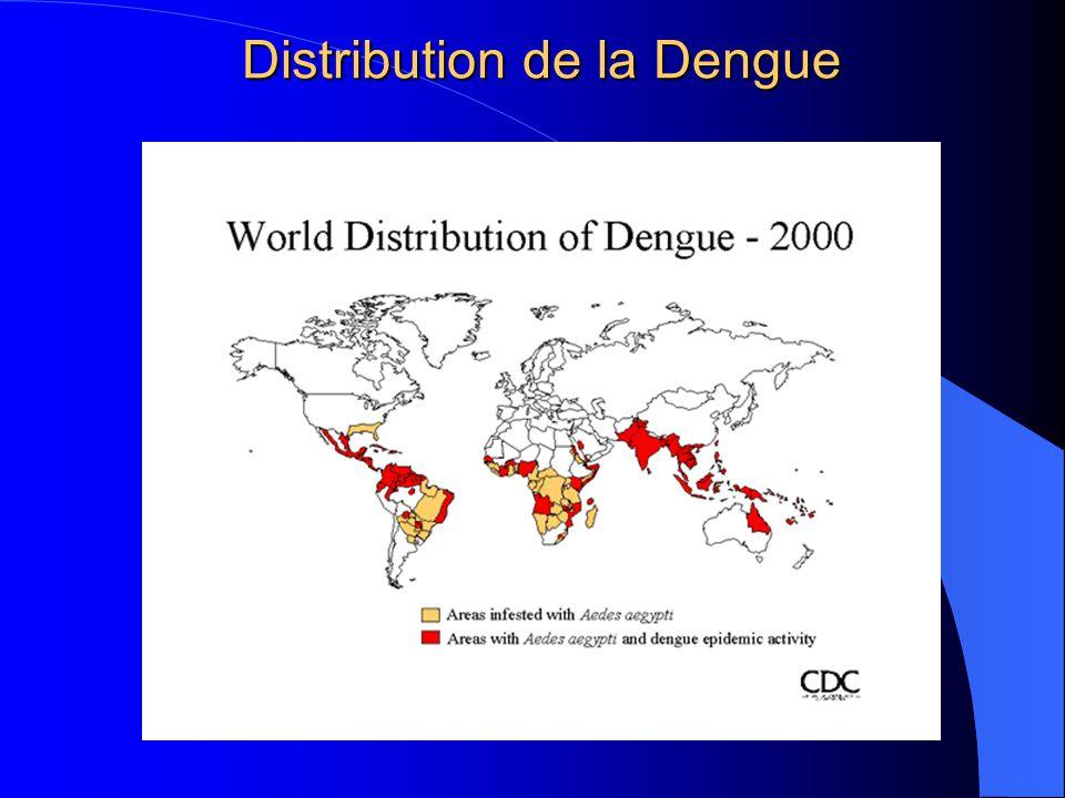 Distribution de la Dengue