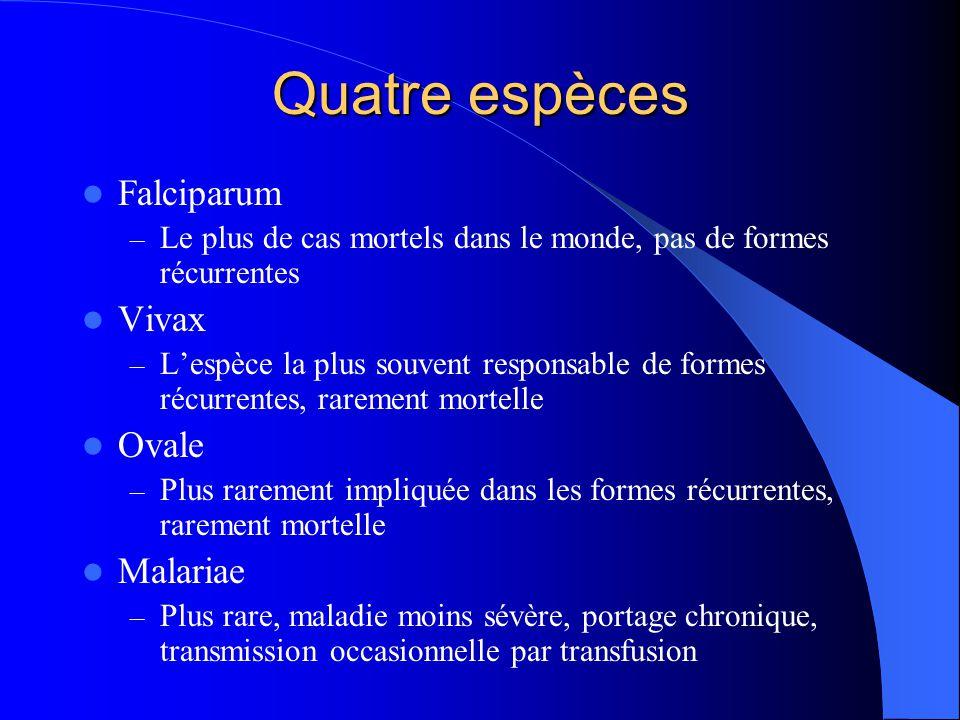 Quatre espèces Falciparum Vivax Ovale Malariae