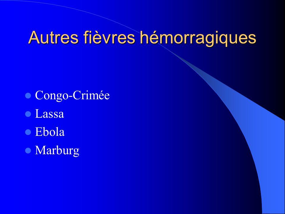 Autres fièvres hémorragiques