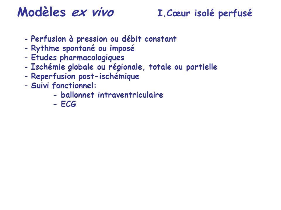 Modèles ex vivo I.Cœur isolé perfusé