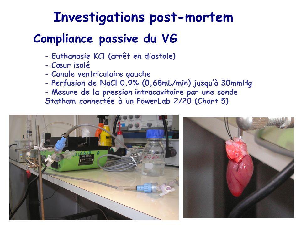 Investigations post-mortem Compliance passive du VG