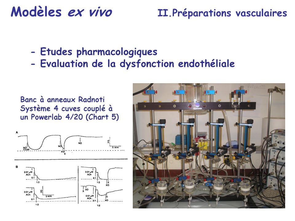 Modèles ex vivo II.Préparations vasculaires