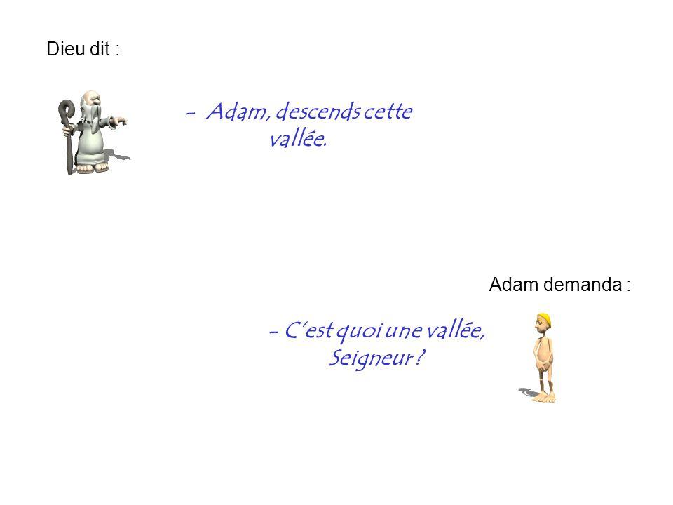 - Adam, descends cette vallée. - C'est quoi une vallée, Seigneur