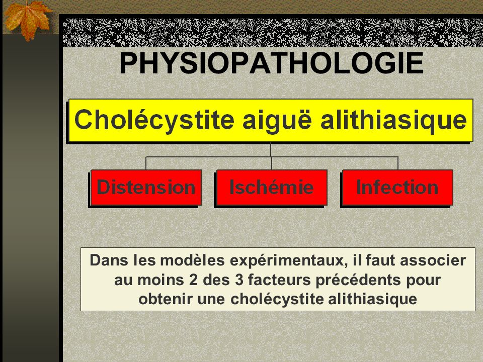 PHYSIOPATHOLOGIE Dans les modèles expérimentaux, il faut associer au moins 2 des 3 facteurs précédents pour obtenir une cholécystite alithiasique.
