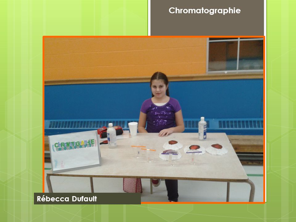 Chromatographie Rébecca Dufault