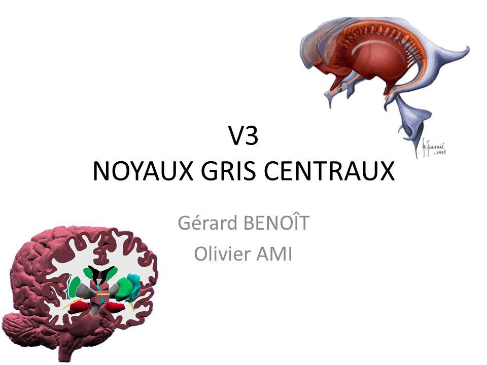 Gérard BENOÎT Olivier AMI