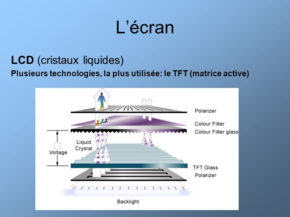 L'écran LCD (cristaux liquides)
