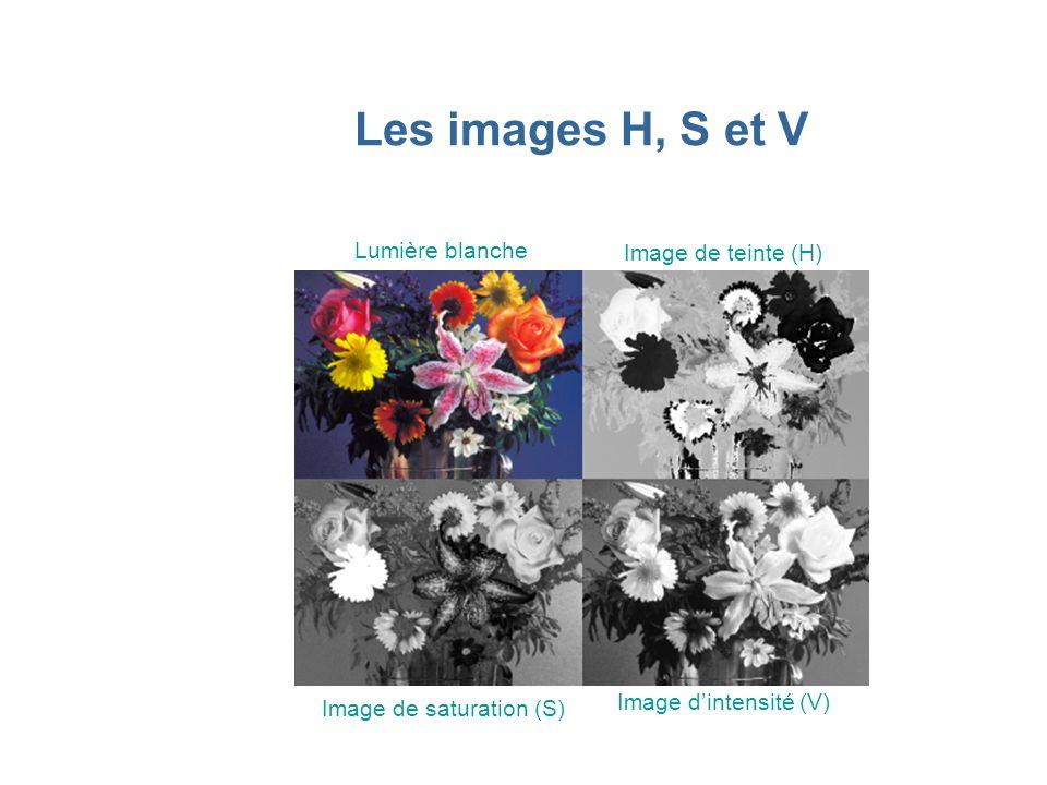 Les images H, S et V Lumière blanche Image de teinte (H)