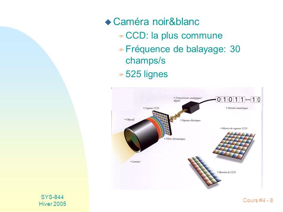 Caméra noir&blanc CCD: la plus commune