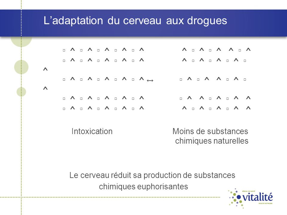 L'adaptation du cerveau aux drogues