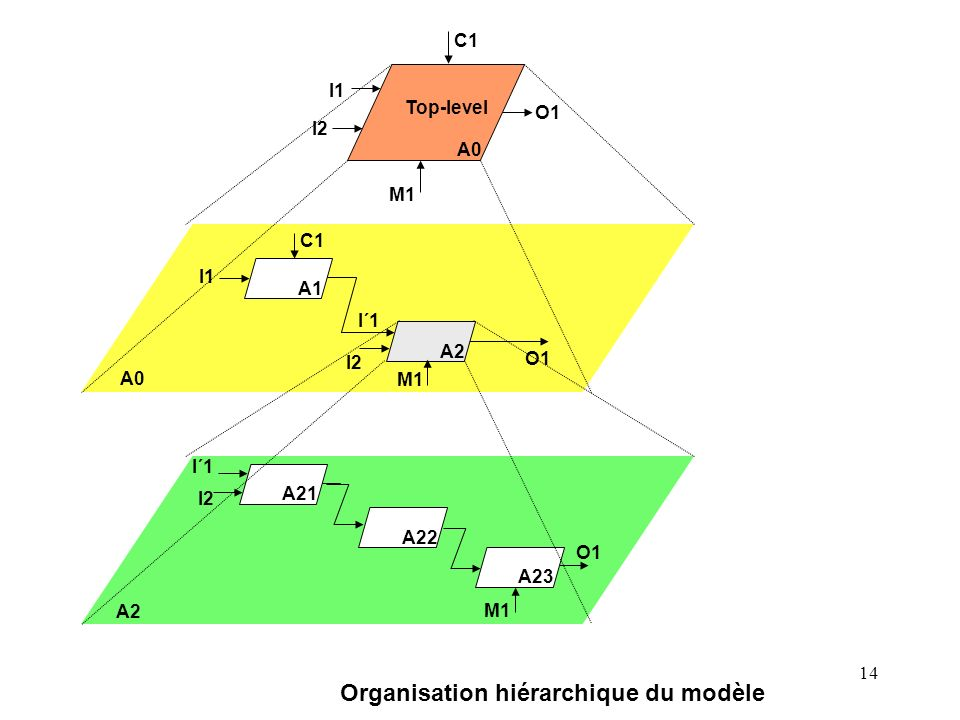 Organisation hiérarchique du modèle