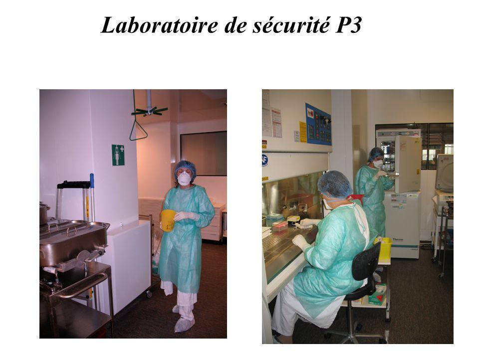 Laboratoire de sécurité P3