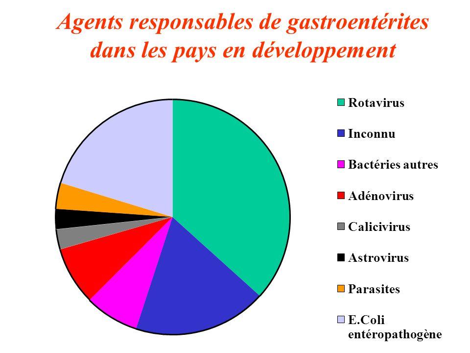 Agents responsables de gastroentérites dans les pays en développement