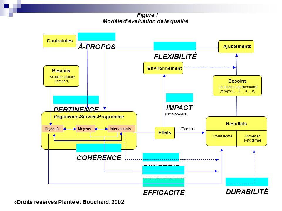 Présentation de l audit à visée participative
