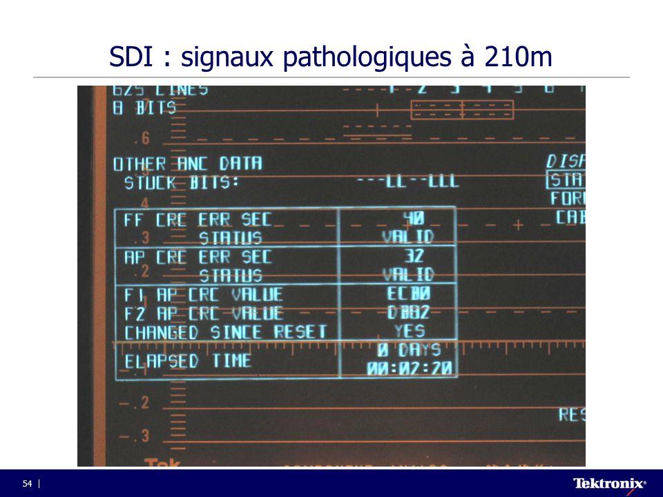SDI : signaux pathologiques à 210m