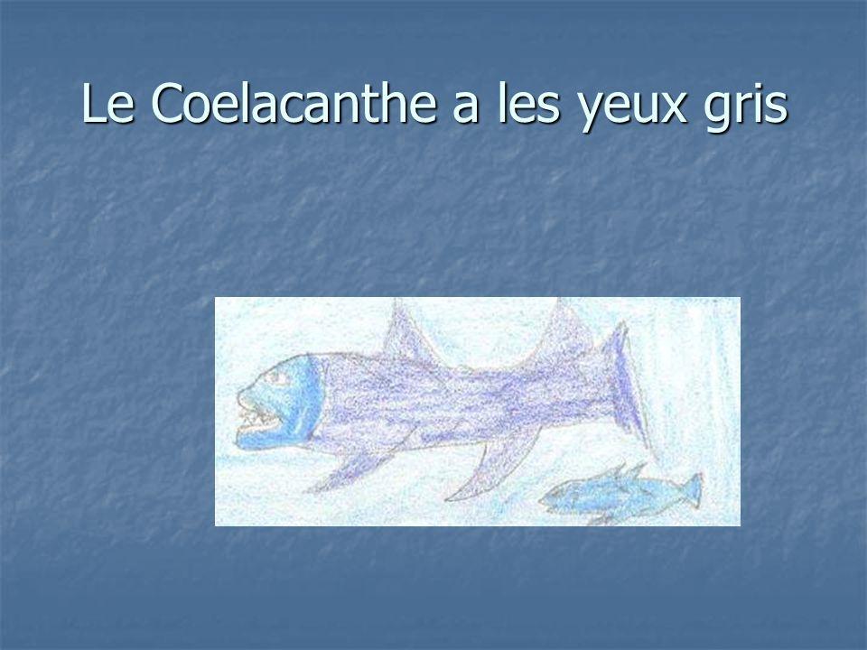 Le Coelacanthe a les yeux gris