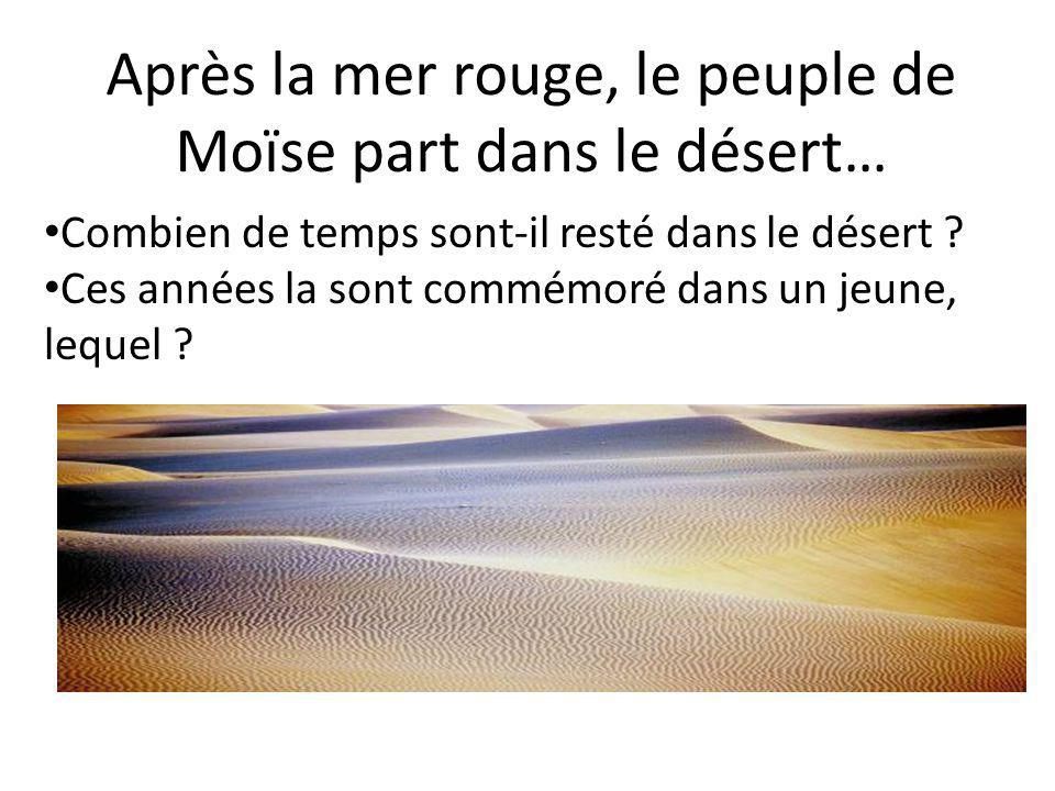 Après la mer rouge, le peuple de Moïse part dans le désert…