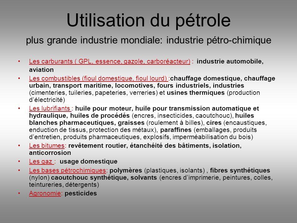 Utilisation du pétrole plus grande industrie mondiale: industrie pétro-chimique
