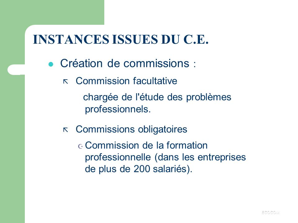 INSTANCES ISSUES DU C.E. Création de commissions :