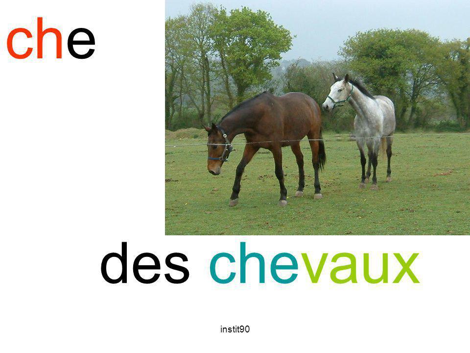 che cheval des chevaux instit90