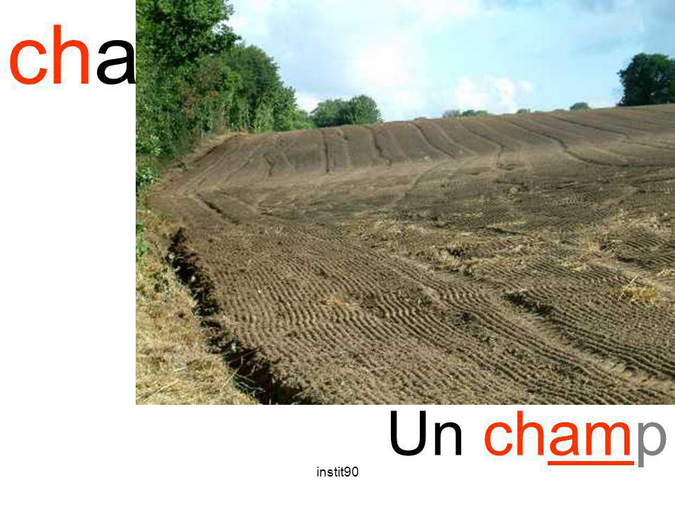 cham champ Un champ instit90