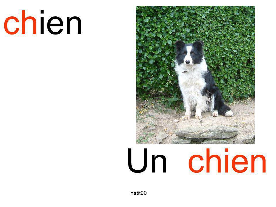 chien Un chien instit90