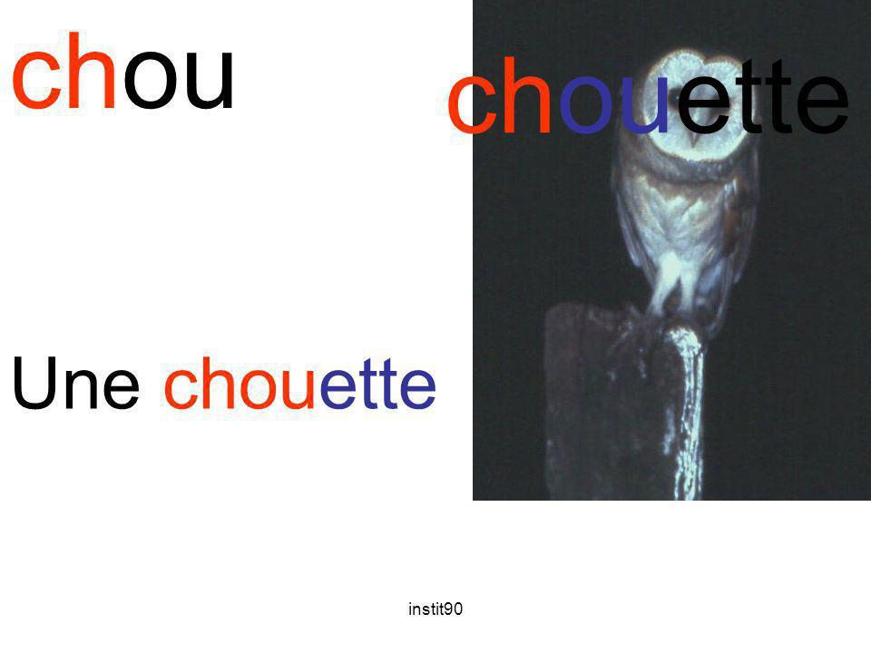 chou chouette Une chouette instit90