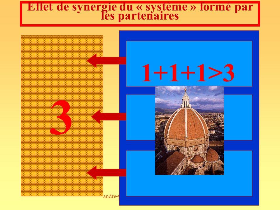 Effet de synergie du « système » formé par les partenaires