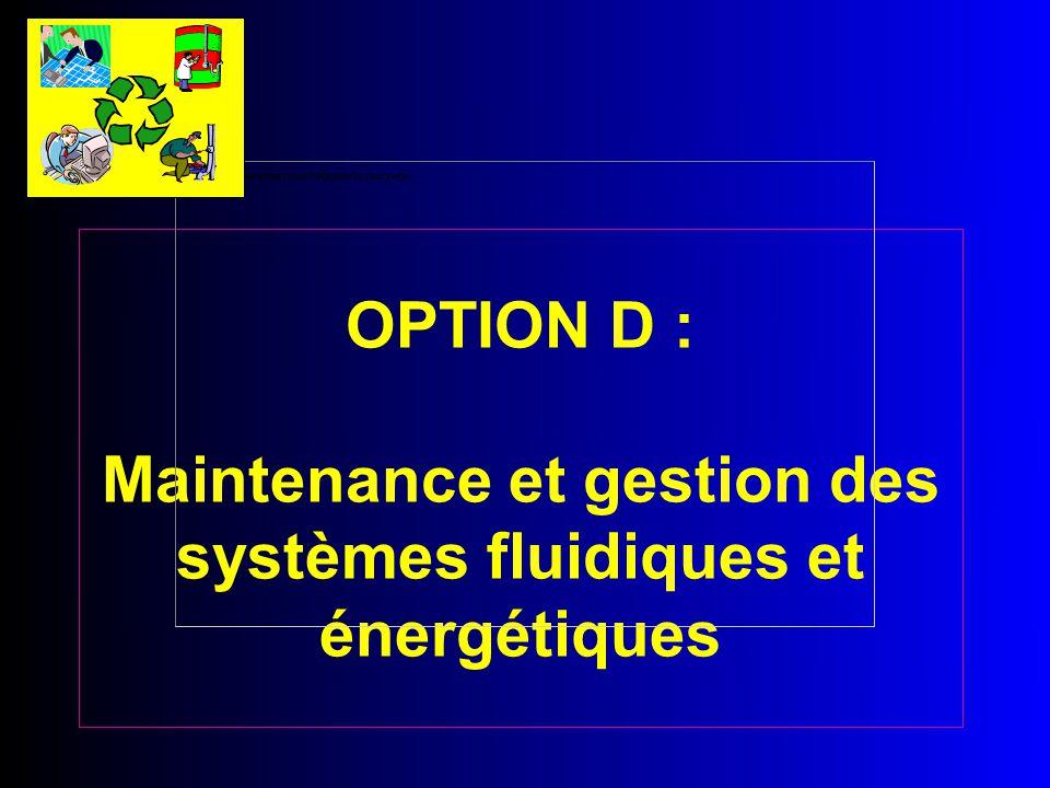 OPTION D : Maintenance et gestion des systèmes fluidiques et énergétiques