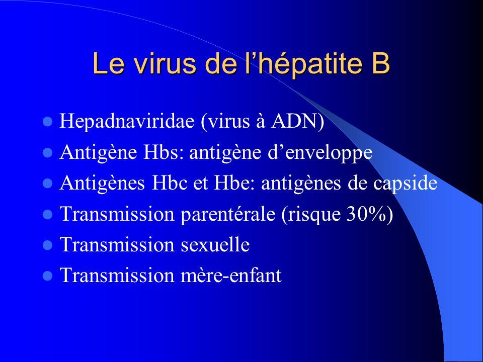 Le virus de l'hépatite B