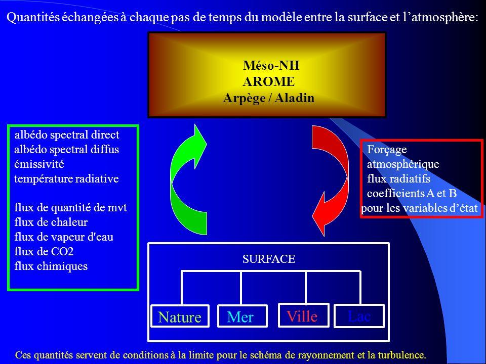 Quantités échangées à chaque pas de temps du modèle entre la surface et l'atmosphère: