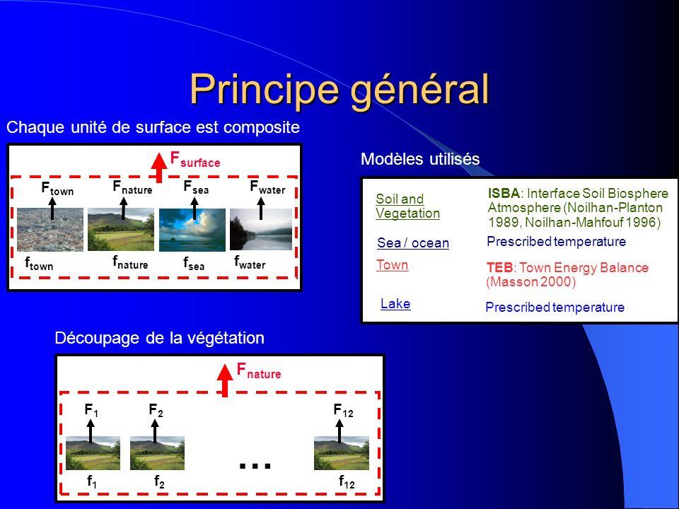 Principe général … Chaque unité de surface est composite Fsurface