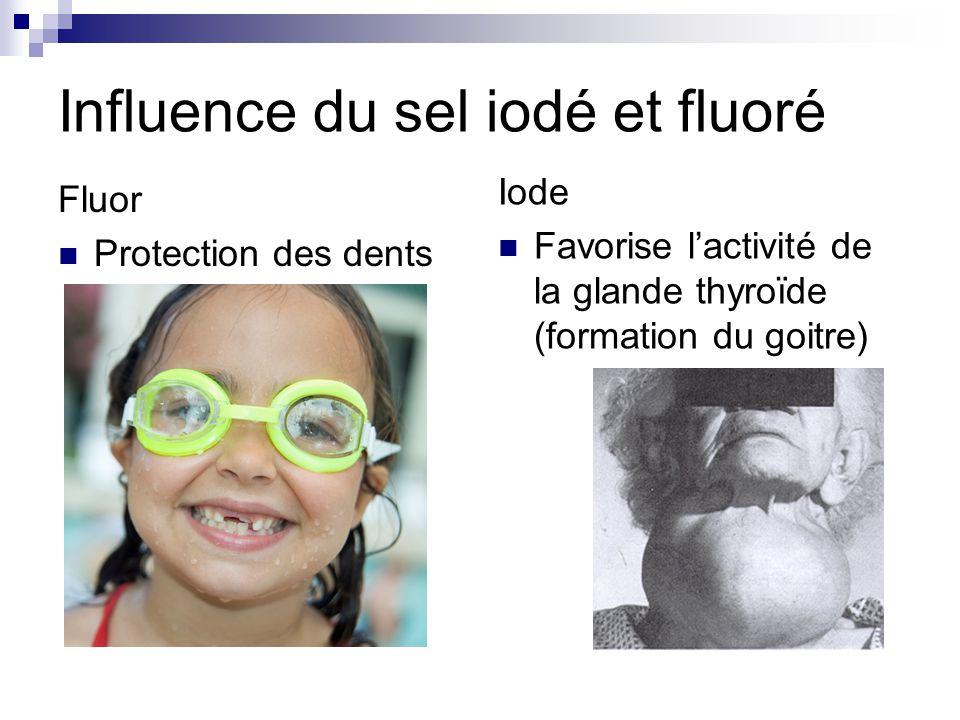 Influence du sel iodé et fluoré