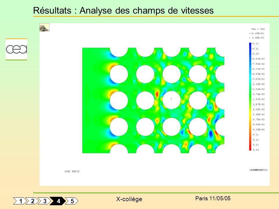 Résultats : Analyse des champs de vitesses