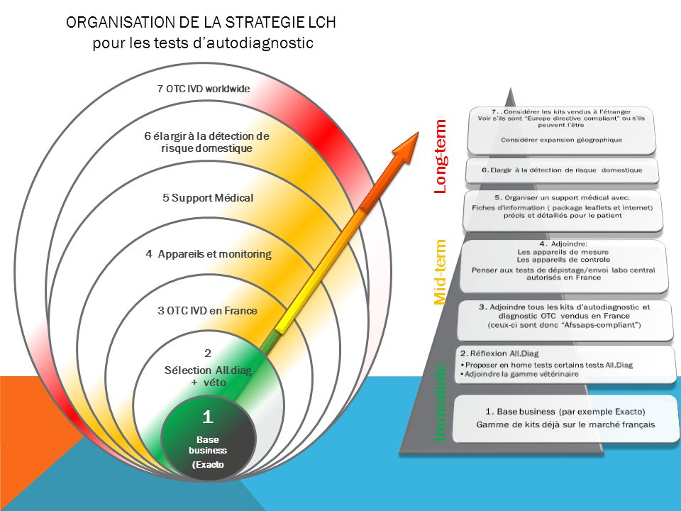 1 ORGANISATION DE LA STRATEGIE LCH pour les tests d'autodiagnostic