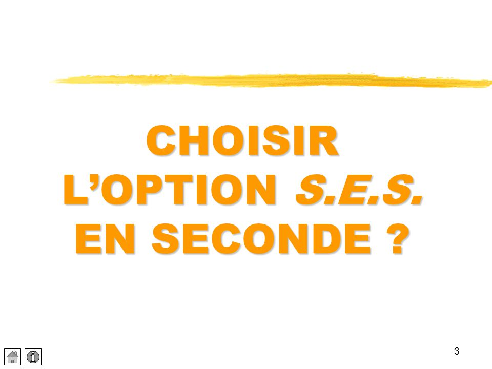CHOISIR L'OPTION S.E.S. EN SECONDE