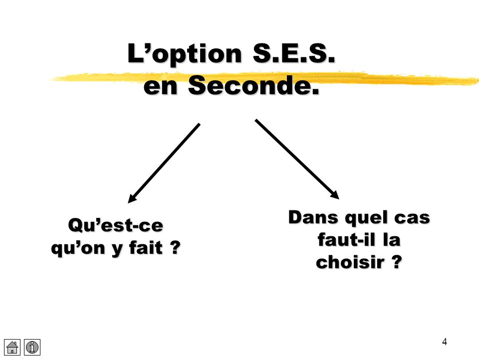 L'option S.E.S. en Seconde.